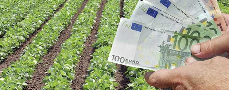 Πριμ έως 50.000 ευρώ σε πτυχιούχους που θα μπουν στην παραγωγή