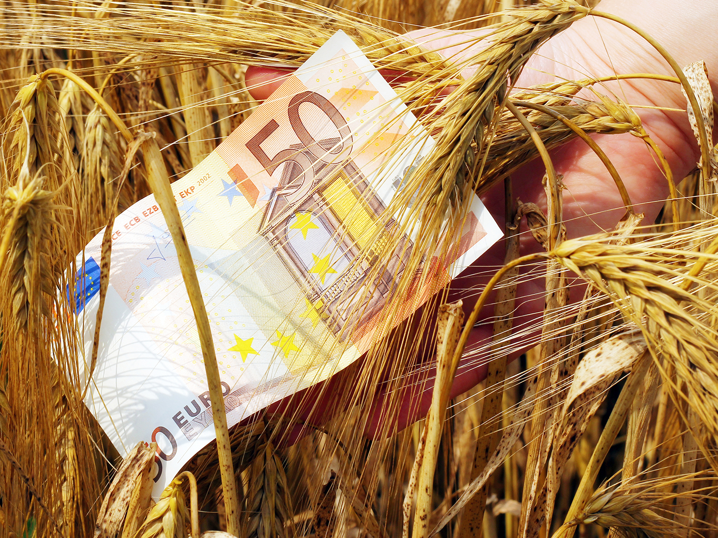 Αραχωβίτης: Παραμένει για τους αγρότες και το ακατάσχετο των 1.250 ευρώ τον μήνα